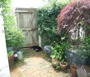snugs-garden