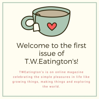 welcome-to-the-fist-issue-of-t-w-eatingtons-2-copy